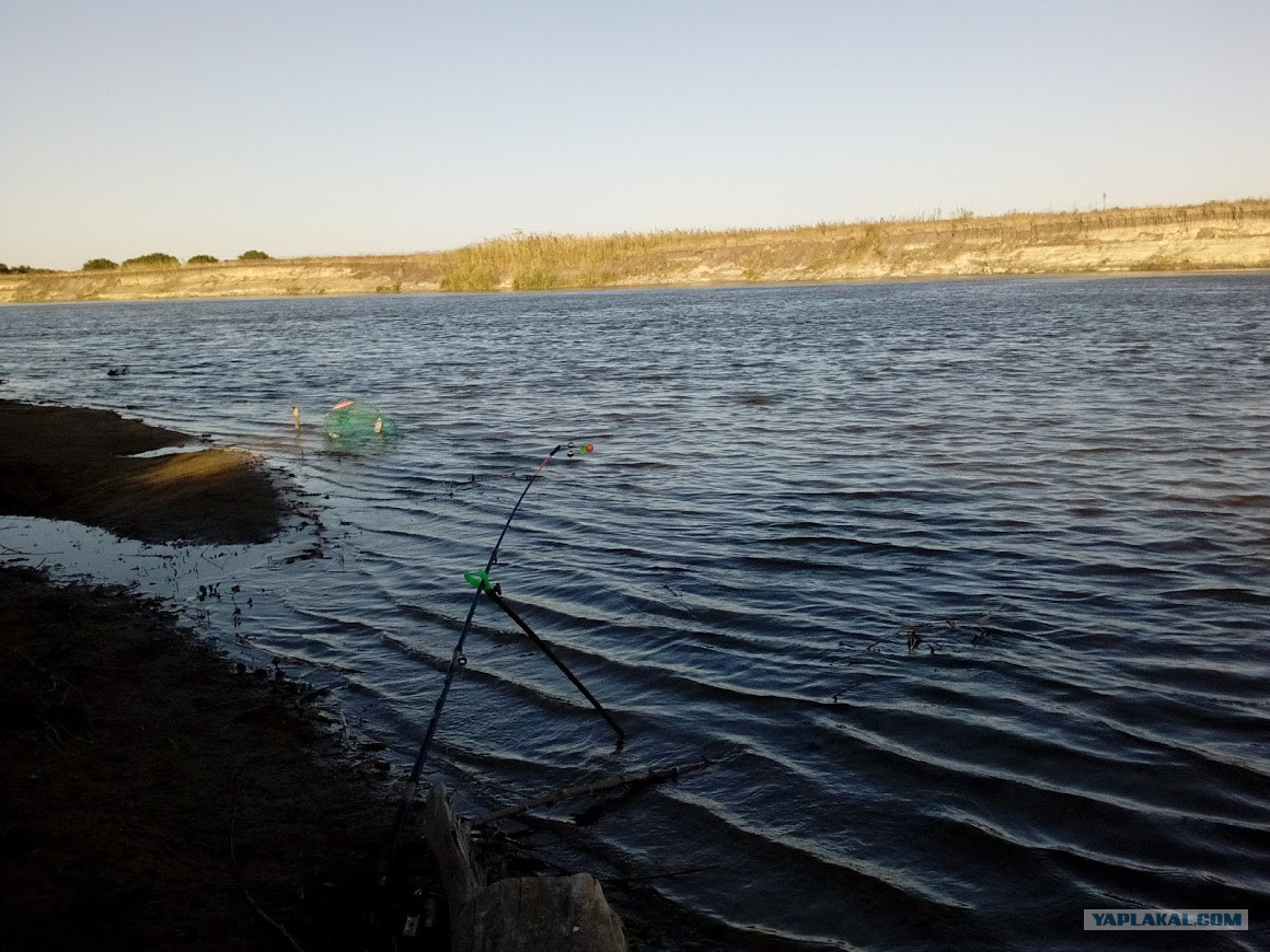 река хопер рыбалка 2016