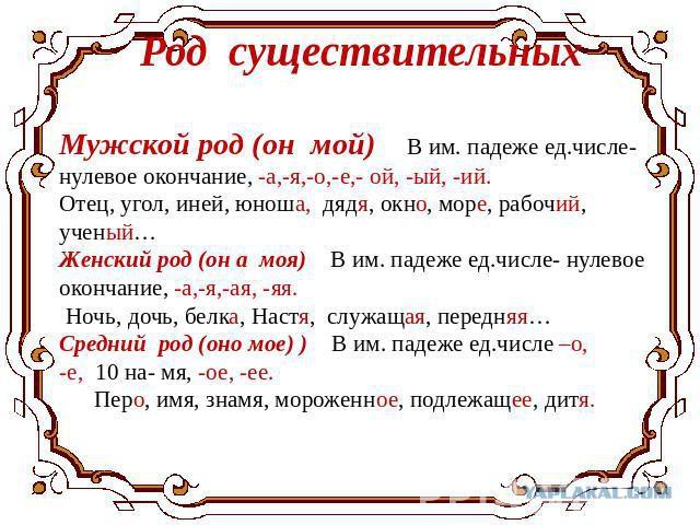 chastnoe-foto-zhenskaya-kiska