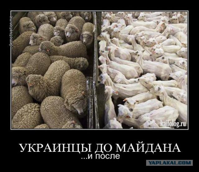 Генштаб Украины озвучил зарплату участников АТО