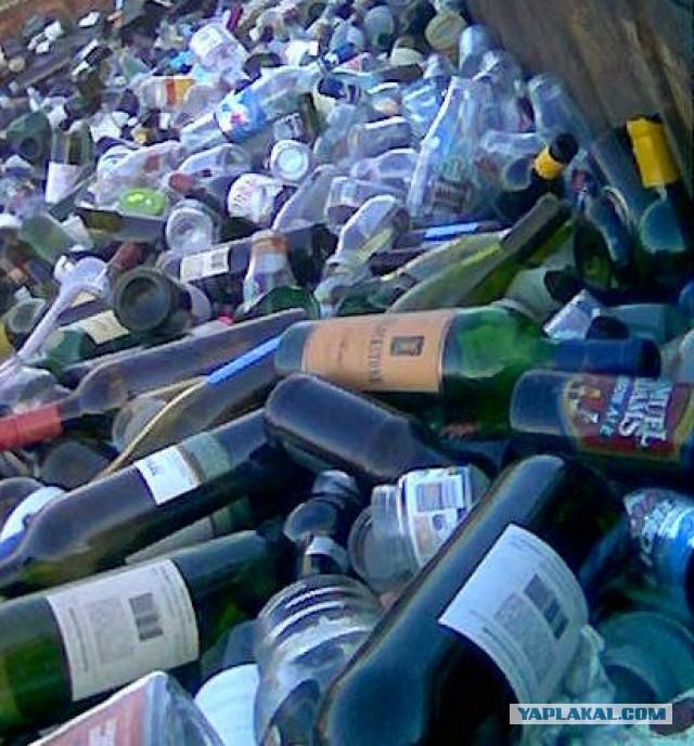 Власти предложат россиянам сдавать бутылки