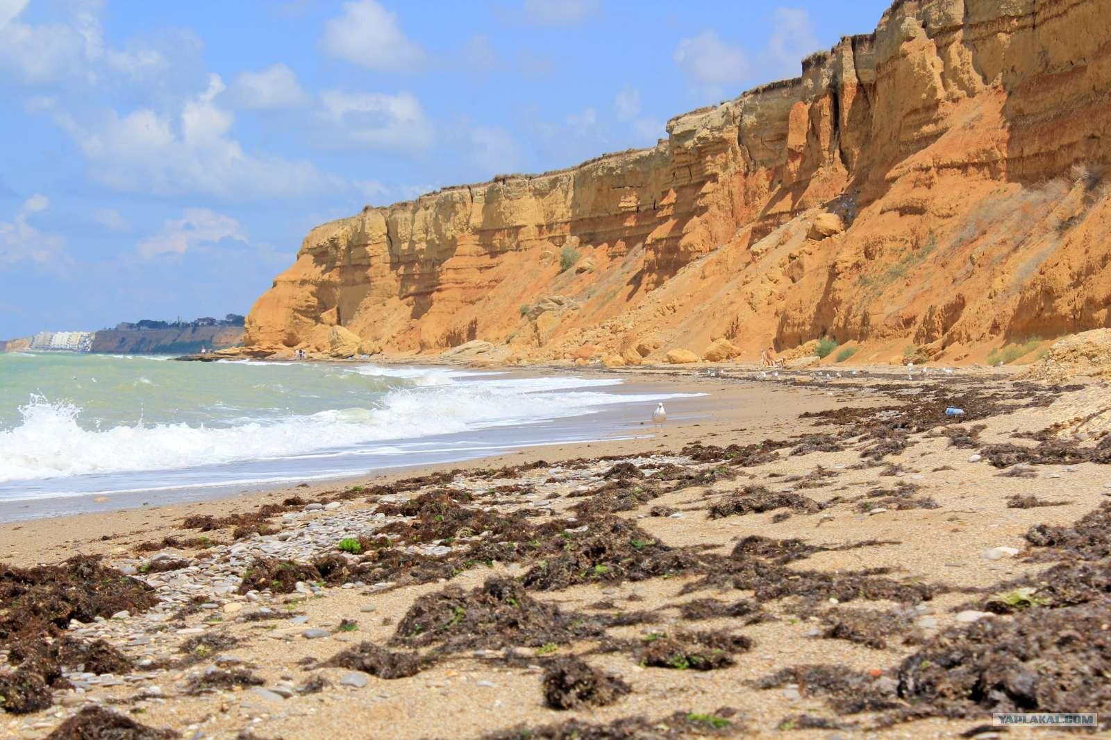 Крым любимовка пляжи фото