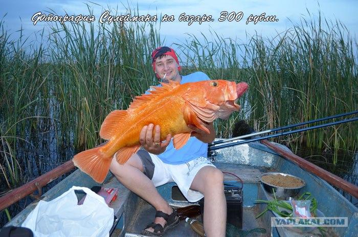 пелагическая рыбалка