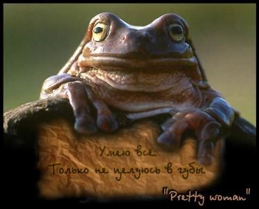 ЛЯГУШКИ. Все про лягушек и жаб - ЯПлакалъ