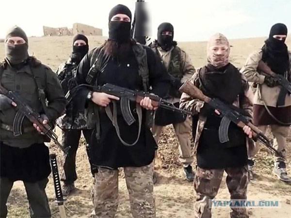 Около 200 боевиков ИГИЛ сдались американской коалиции в Сирии