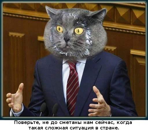 Госдума и Совет Федерации не сократили потребление черной икры