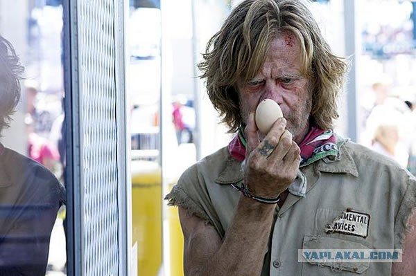 Американец много лет путешествует в крошечном домике, который построил своими руками