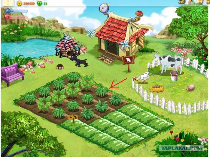 Раздел. Статьи. За год игра Счастливый фермер для социальной