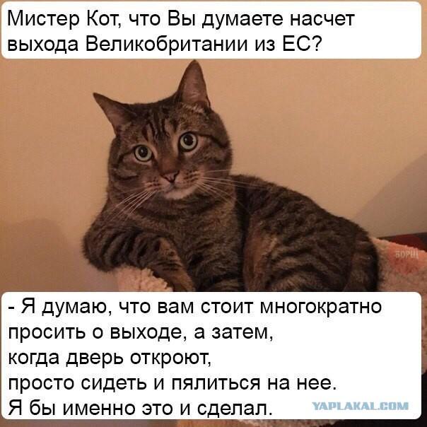 Продукты Воронеж - Продукты на дом Воронеж