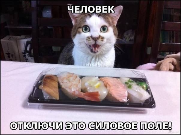 http://s00.yaplakal.com/pics/pics_original/2/0/3/2682302.jpg