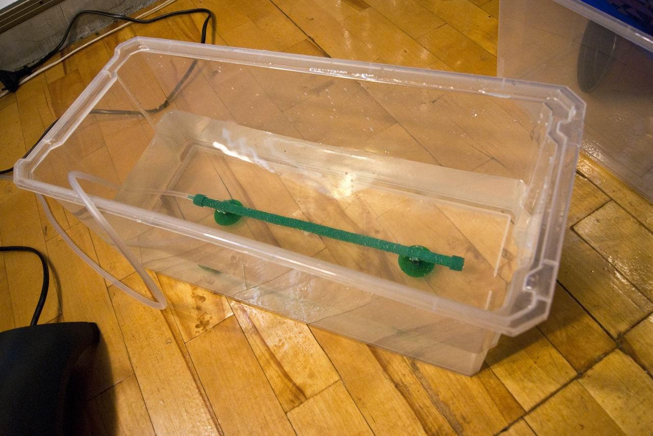 Как сделать фильтр для аквариума из подручных
