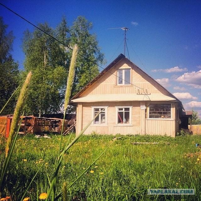 13 соток в жопе Ленинградской области. Вдруг надо кому.