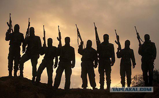 Саудовские богословы призывают к джихаду против РФ