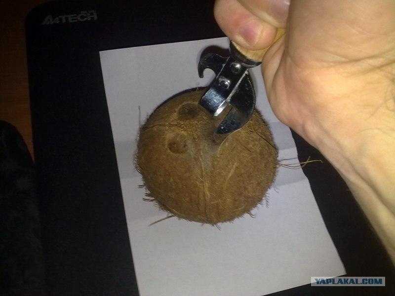 кокосовое масло вред