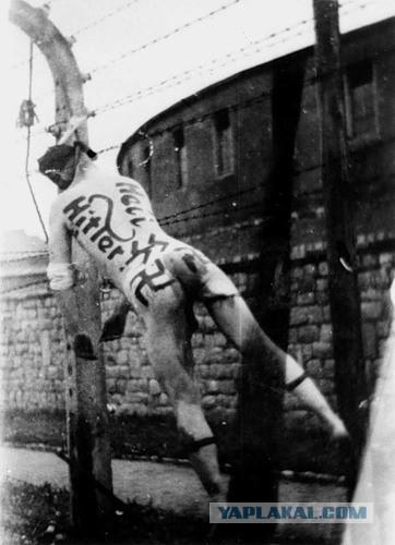 Как чехи немцам мстили. 1945 год