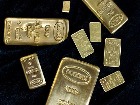 17 слитков золота на 12 млн рублей нашел амурчанин в лесу