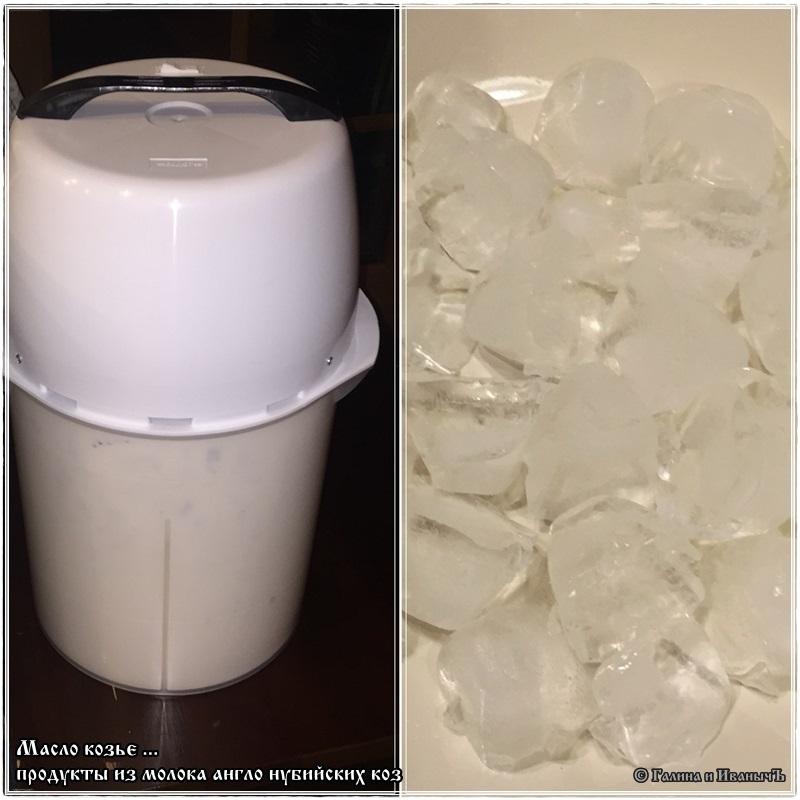 Как в домашних условиях сделать сметану из козьего молока