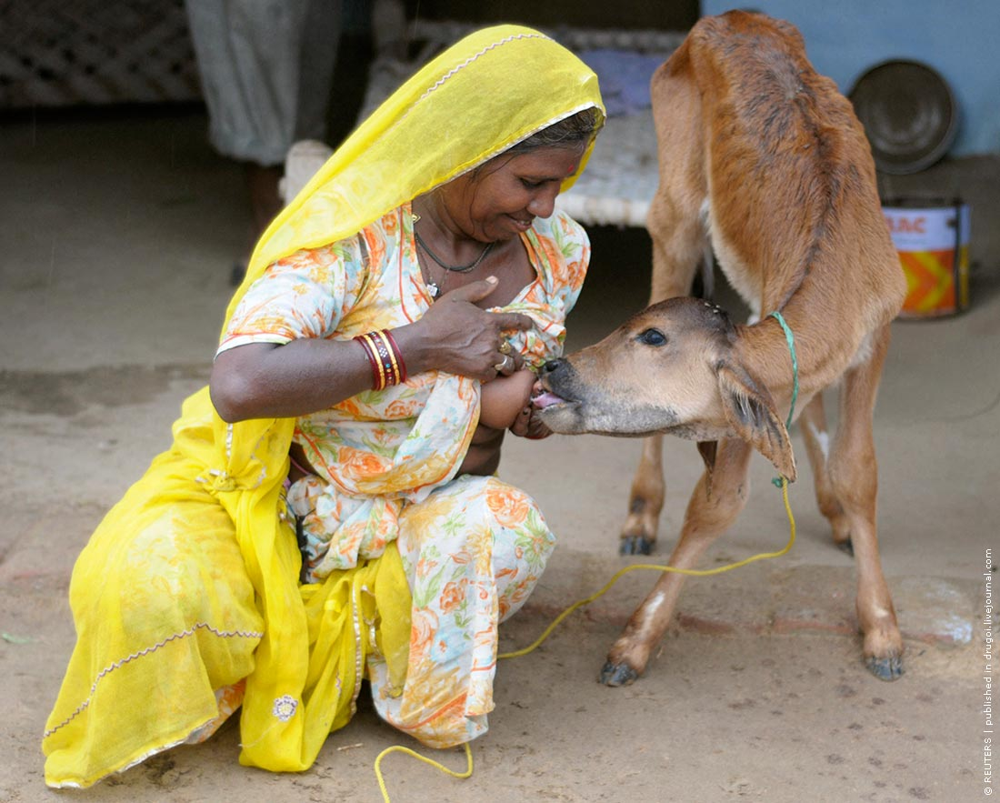 Сиськи кормящий девушки фото 9 фотография