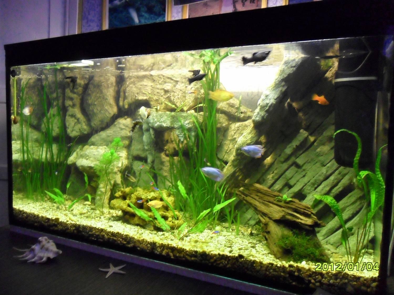 Фон в аквариуме своими руками
