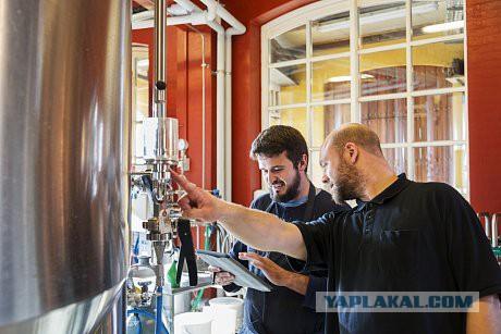 Производители пива предупредили об остановке работы пивных заводов в России