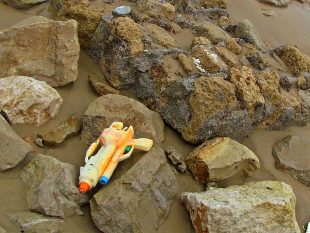 Что можно найти на берегу после шторма