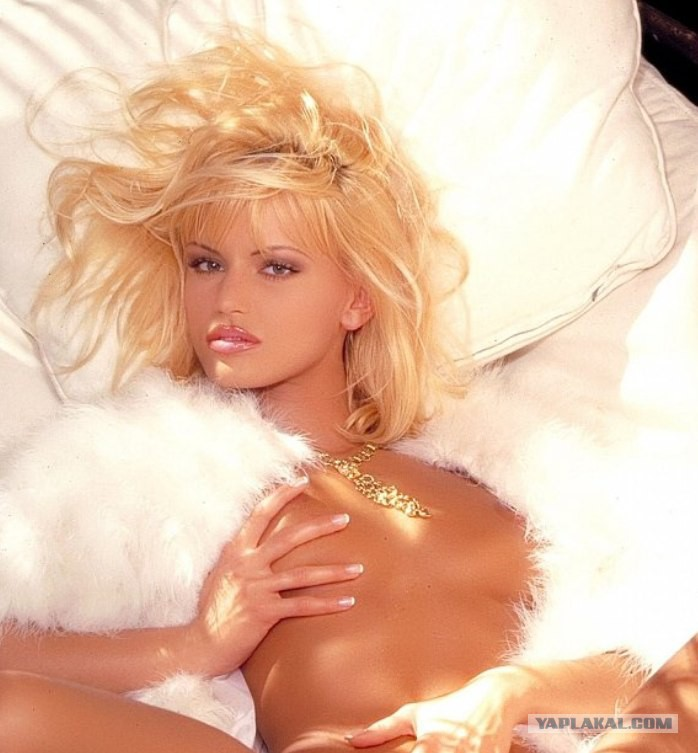 Современное порно с анитой блонд 19 фотография