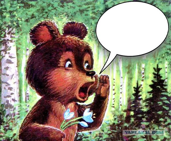 шлюха говорит медведь фото который