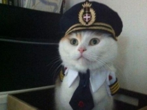 Капитан - ЯПлакалъ