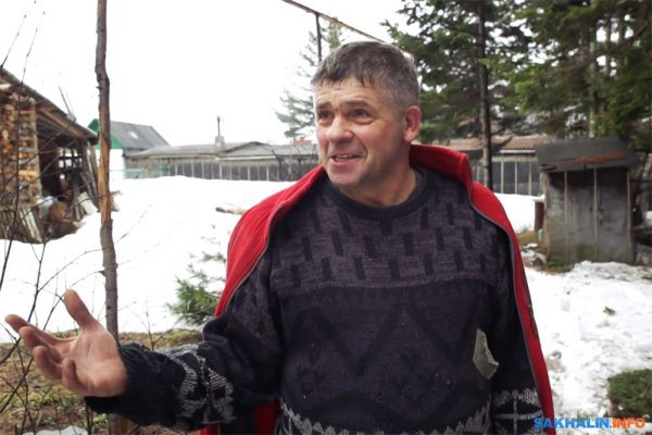 Иван Санжаров, мечтавший превратить Сахалин в остров кедров, вынужден уехать навсегда