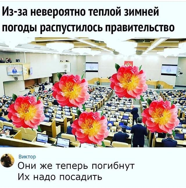 http://s00.yaplakal.com/pics/pics_original/2/6/8/13873862.jpg