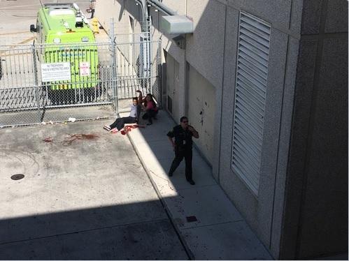 В аэропорту Флориды неизвестный открыл стрельбу, 5 человек убиты