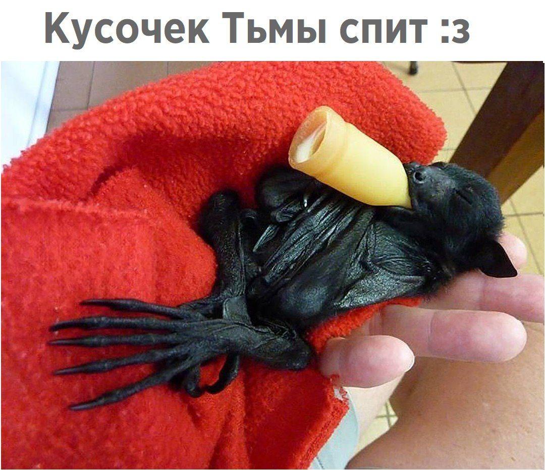 http://s00.yaplakal.com/pics/pics_original/2/7/7/10933772.jpg