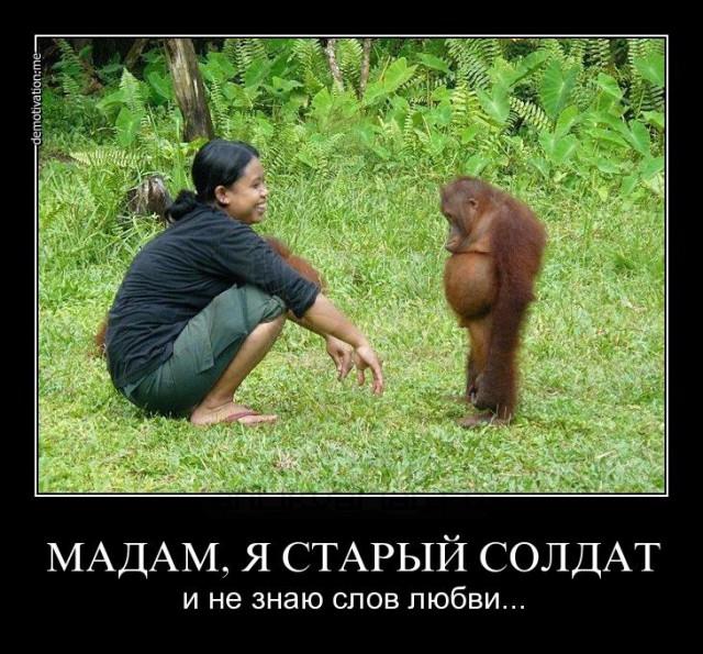 http://s00.yaplakal.com/pics/pics_original/2/7/7/11322772.jpg