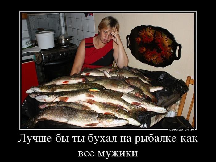 показать видео как клюет донная рыба