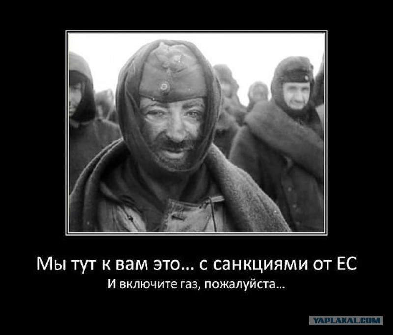 Демотиваторы  Майдан Украина ЕС Россия  Новороссия