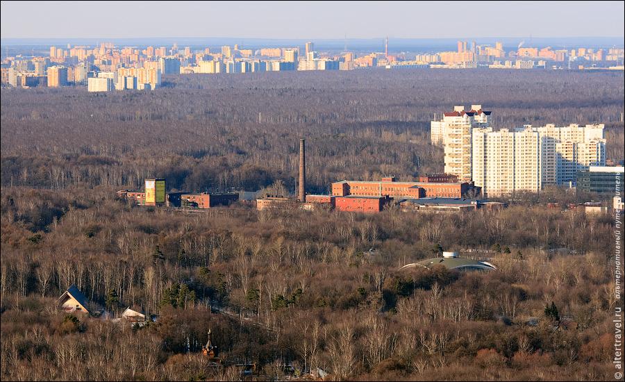 ширяево поле фото