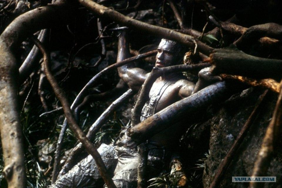 кадры из фильма Хищник.
