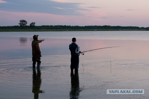 Утро на рыбалке.