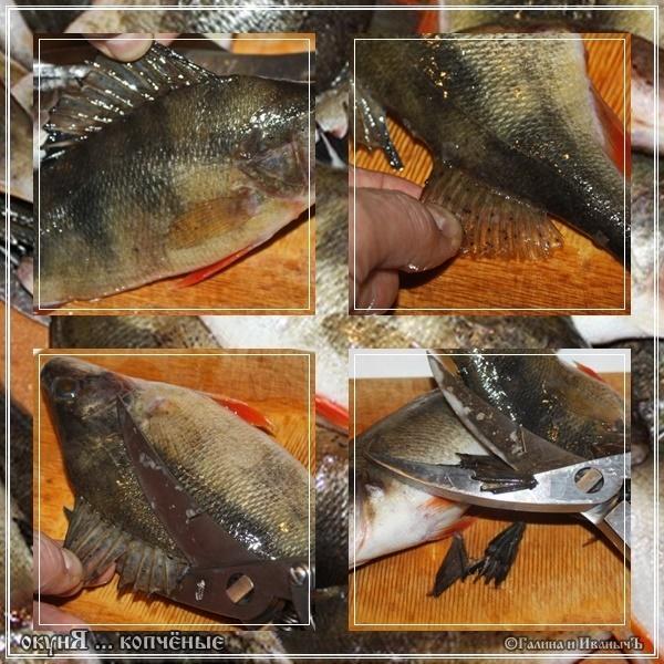 Окуня морского рецепт пошаговый