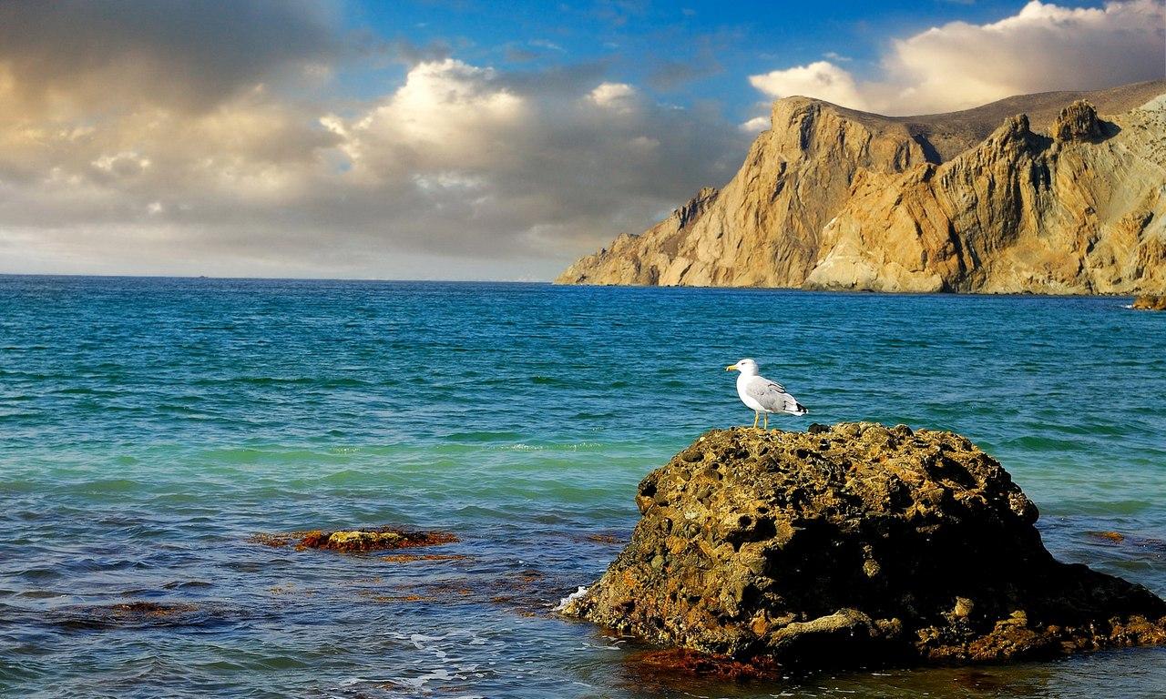 Фото море крым