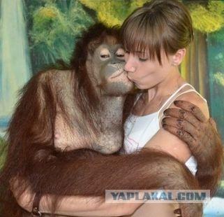 Секс девушки с обезьяной онлайн совсем