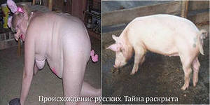 Если закрыть глаза на преступления России, они не исчезнут, - Грибаускайте - Цензор.НЕТ 9092