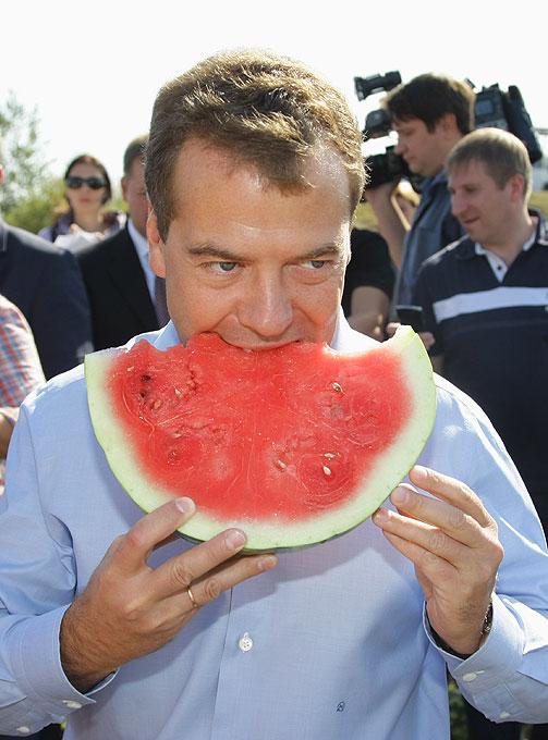 Медведев сходил за продуктами