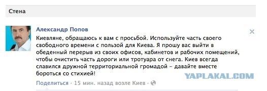 Киевский мер предложил жителям самим убрать снег