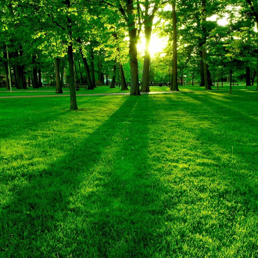 Просто красивые фото - Страница 4 10761033