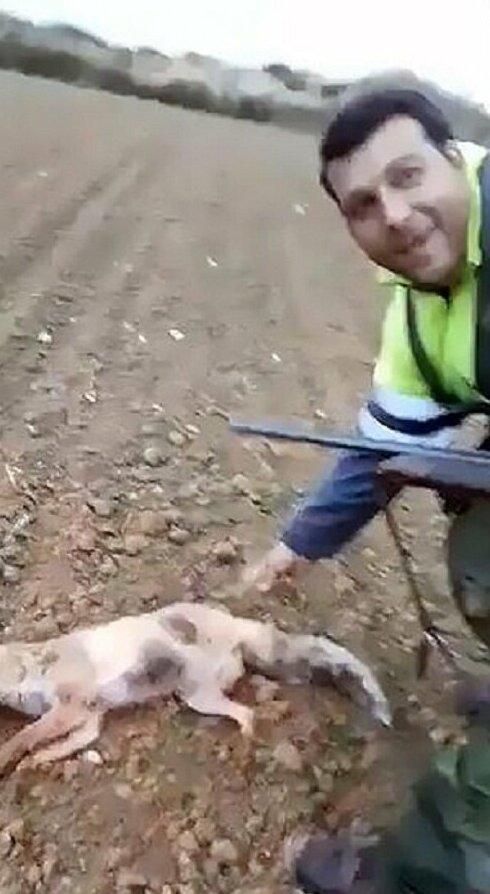 Издевательство охотника над раненой лисой возмутило и охотников, и зоозащитников. 18+