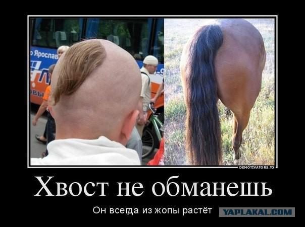 bryunetku-v-zhopu-perviy-raz