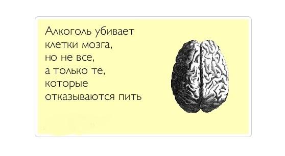 Анекдот Про Мозги