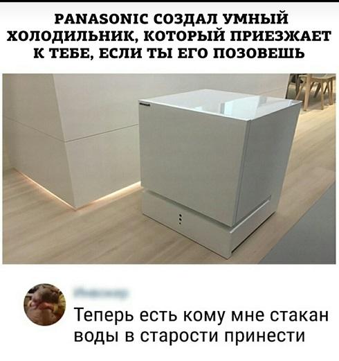 12191343.jpg