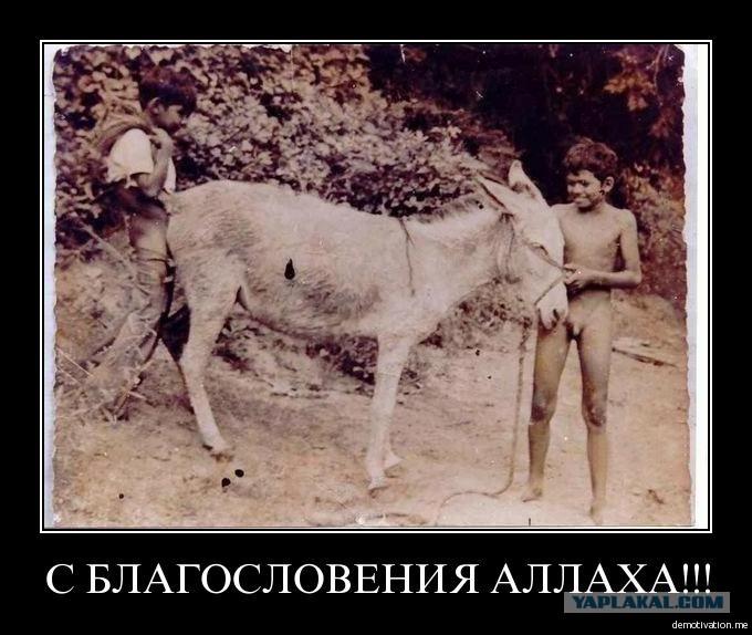 Голый чеченец гей