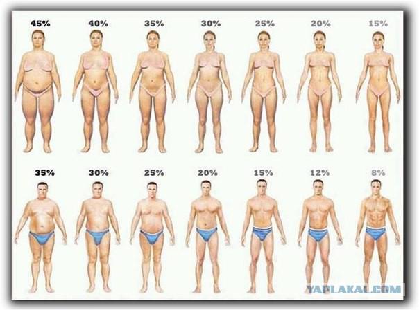 2. Почему у некоторых мужчин такой маленький?